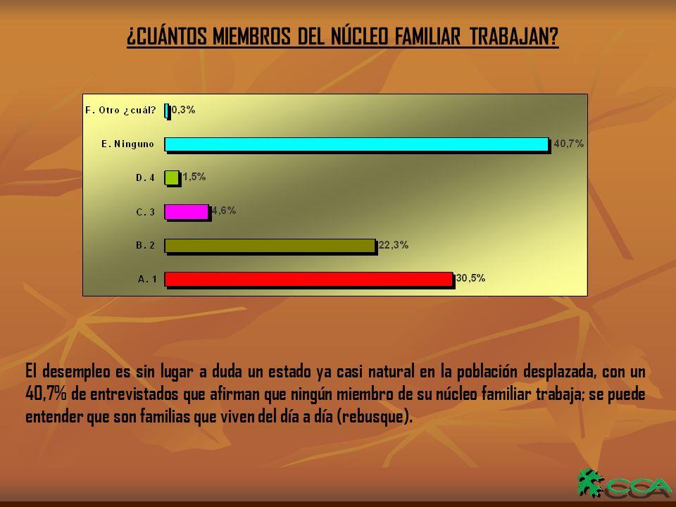 ¿CUÁNTOS MIEMBROS DEL NÚCLEO FAMILIAR TRABAJAN.