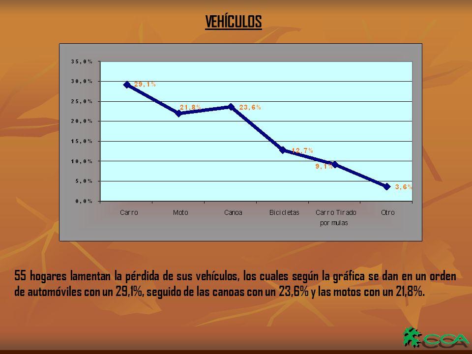 VEHÍCULOS 55 hogares lamentan la pérdida de sus vehículos, los cuales según la gráfica se dan en un orden de automóviles con un 29,1%, seguido de las canoas con un 23,6% y las motos con un 21,8%.