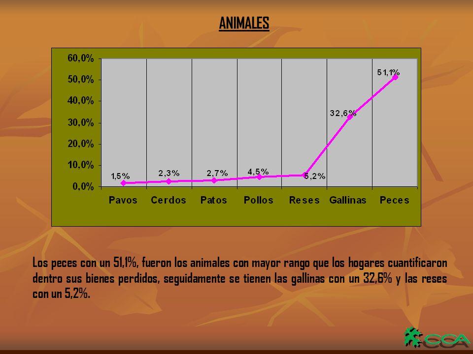ANIMALES Los peces con un 51,1%, fueron los animales con mayor rango que los hogares cuantificaron dentro sus bienes perdidos, seguidamente se tienen las gallinas con un 32,6% y las reses con un 5,2%.