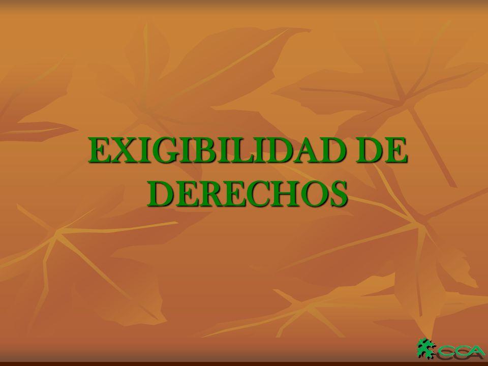 EXIGIBILIDAD DE DERECHOS