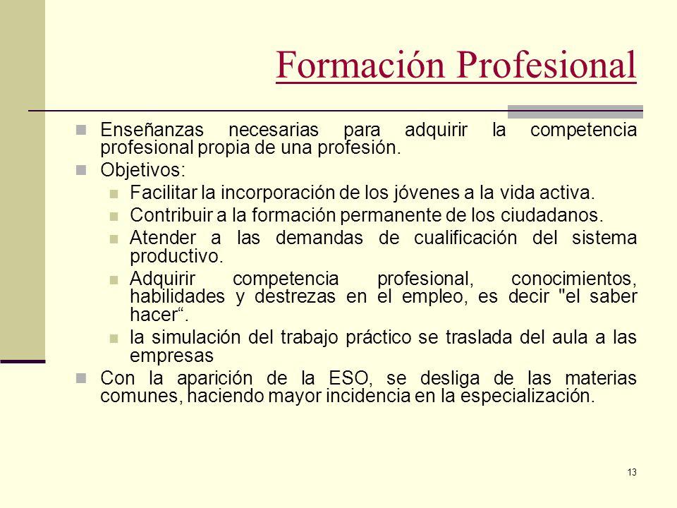 13 Formación Profesional Enseñanzas necesarias para adquirir la competencia profesional propia de una profesión. Objetivos: Facilitar la incorporación