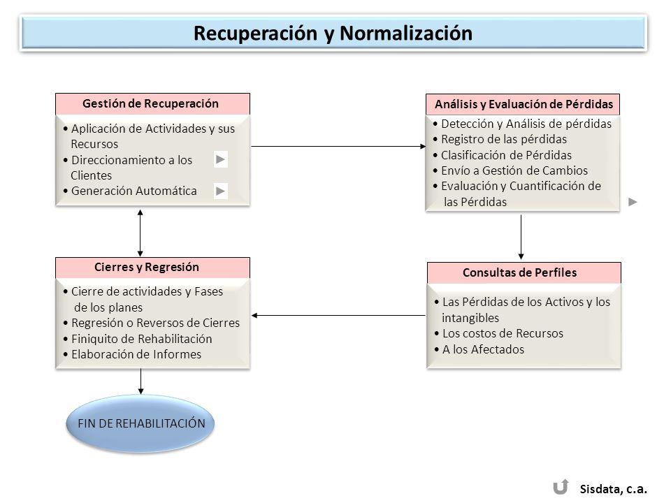 Sisdata, c.a. Consultas de Perfiles Las Pérdidas de los Activos y los intangibles Los costos de Recursos A los Afectados Las Pérdidas de los Activos y