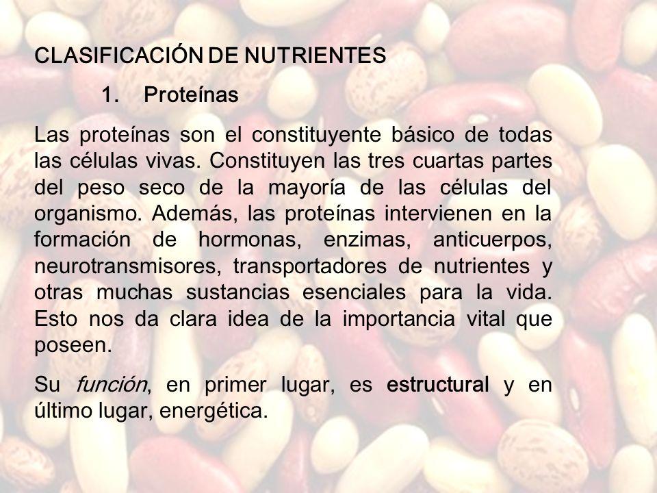 www.iasdsanjudas.com Yogur con fruta, plátanos, frutos secos, infusiones Más o menos como la comida, también sopas o hervidos de verduras, etc. Pan in