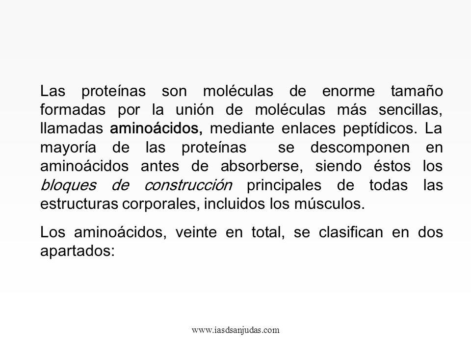 www.iasdsanjudas.com CLASIFICACIÓN DE NUTRIENTES 1. Proteínas Las proteínas son el constituyente básico de todas las células vivas. Constituyen las tr