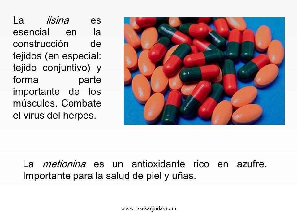 www.iasdsanjudas.com Esenciales. Deben ser aportados en la dieta, ya que no podemos fabricarlos en el organismo. Son la lisina, la leucina, la isoleuc
