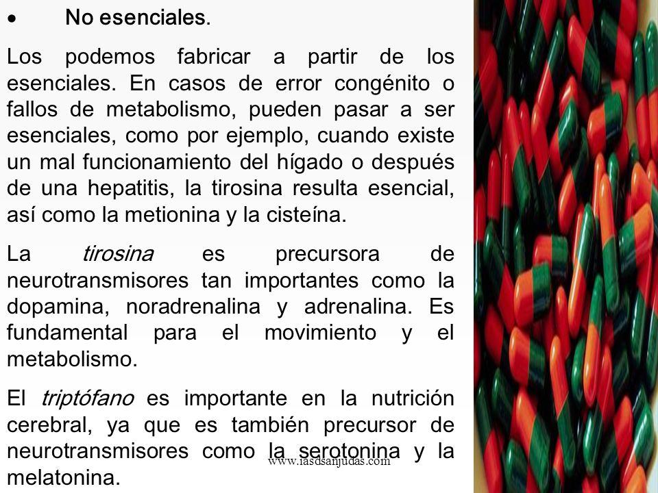 www.iasdsanjudas.com La lisina es esencial en la construcción de tejidos (en especial: tejido conjuntivo) y forma parte importante de los músculos. Co