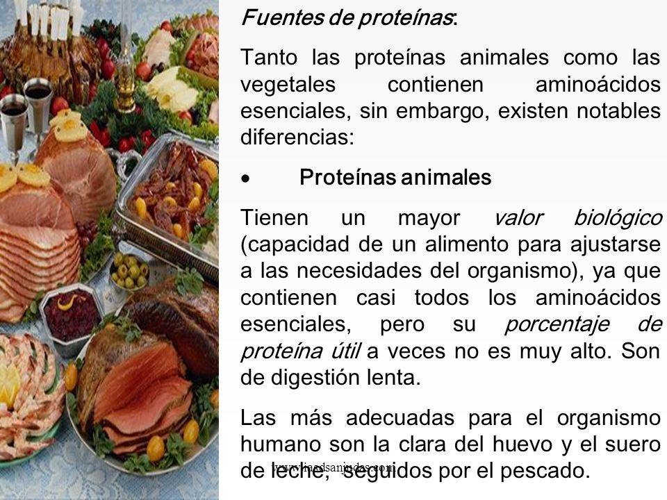 www.iasdsanjudas.com El glutation es un potente antioxidante y desintoxicante. La histidina es importante para la reparación y el crecimiento de los t