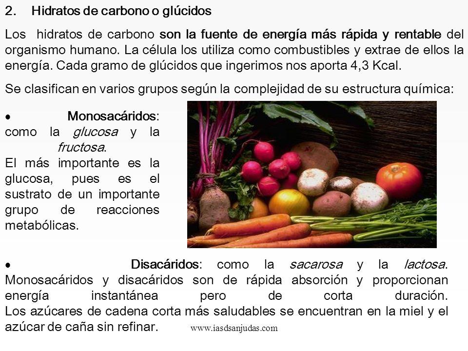 www.iasdsanjudas.com Proteínas vegetales Tienen, en general, un valor biológico menor que los productos animales, con excepción de la soja, que tiene