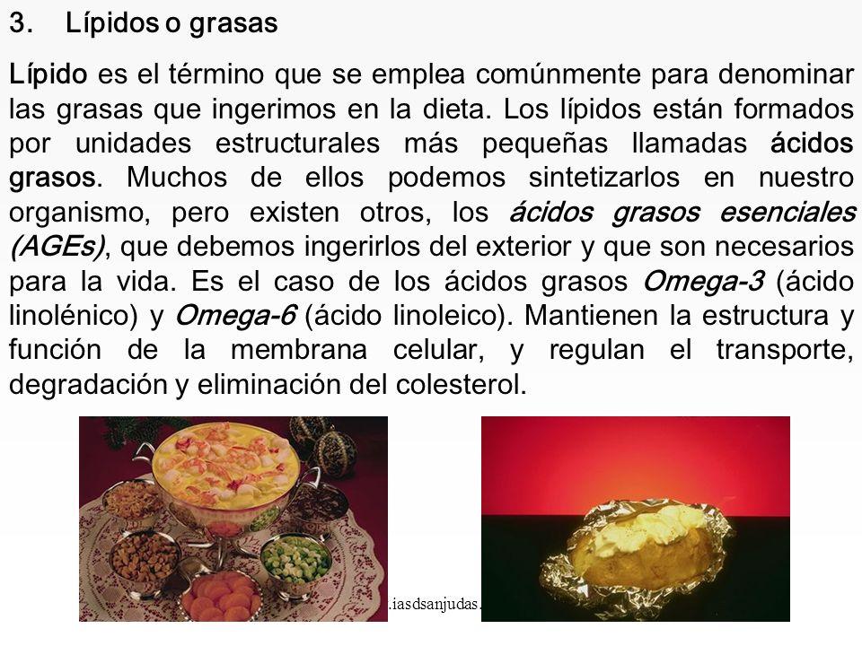 www.iasdsanjudas.com Los oligosacáridos Contenidos en frutas y hortalizas, son macromoléculas formados por 4 a 12 moléculas de glucosa. Las cadenas má