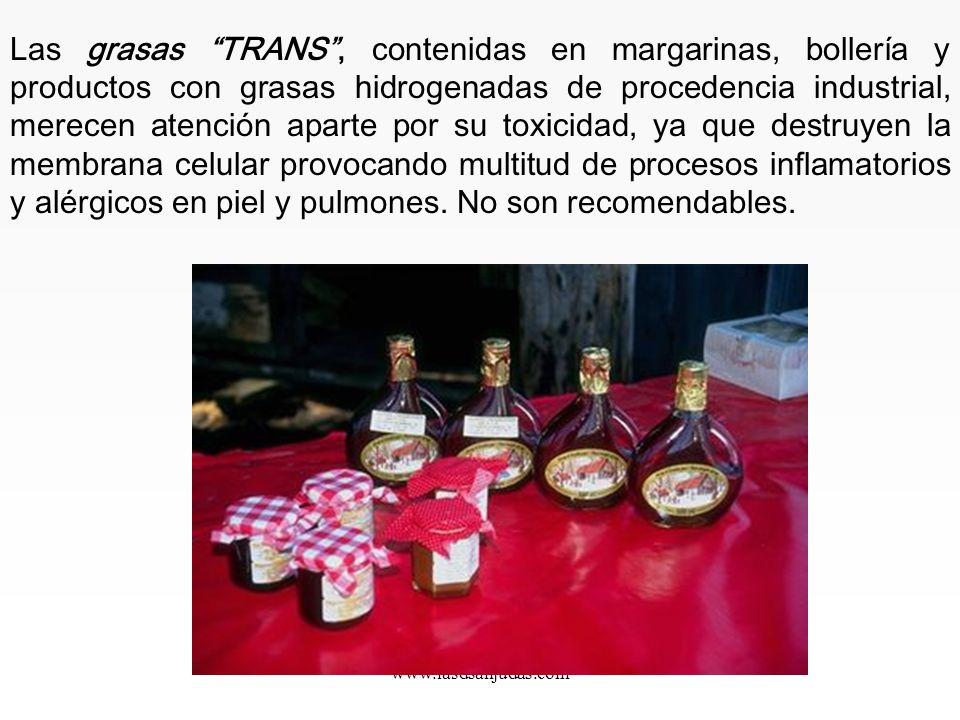 www.iasdsanjudas.com Las grasas se clasifican en: Saturadas: De origen animal. No son recomendables ya que son de difícil digestión y se almacenan en
