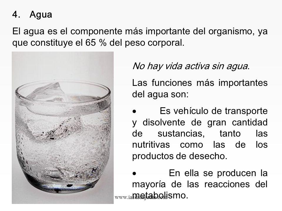 www.iasdsanjudas.com Las grasas TRANS, contenidas en margarinas, bollería y productos con grasas hidrogenadas de procedencia industrial, merecen atenc