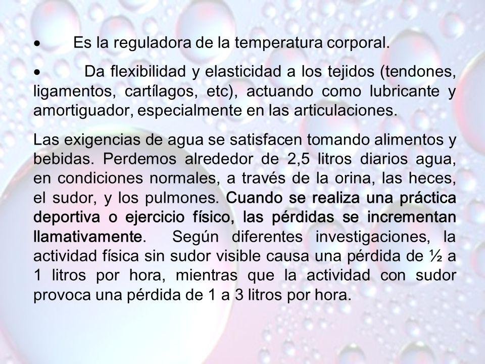 www.iasdsanjudas.com 4. Agua El agua es el componente más importante del organismo, ya que constituye el 65 % del peso corporal. No hay vida activa si