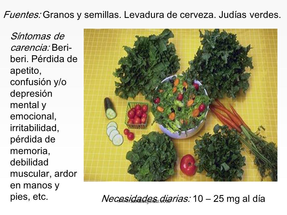 www.iasdsanjudas.com Vitaminas del grupo B: Son sinérgicas y deben tomarse juntas, ya que el consumo deficitario de una de ellas puede causar deficien
