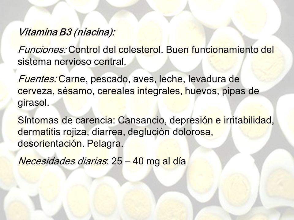 www.iasdsanjudas.com Vitamina B2 (riboflavina) Funciones: Activa numerosas vitaminas. Coenzima en las funciones de reducción-oxidación. Síntomas de ca
