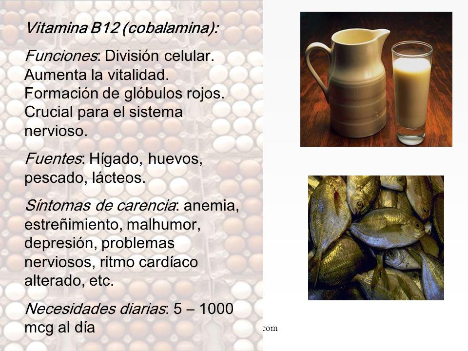 www.iasdsanjudas.com Vitamina B6 (piridoxina): Funciones: Reduce los niveles de homocisteína. Metabolismo de proteínas. Funcionamiento del sistema ner
