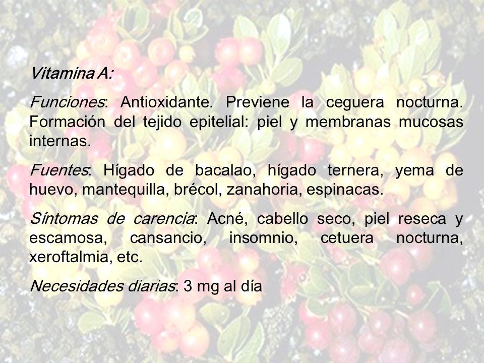 www.iasdsanjudas.com El ácido fólico, la colina, el inositol, la biotina y el PABA (ácido para aminobenzoico) son consideradas también del grupo de la