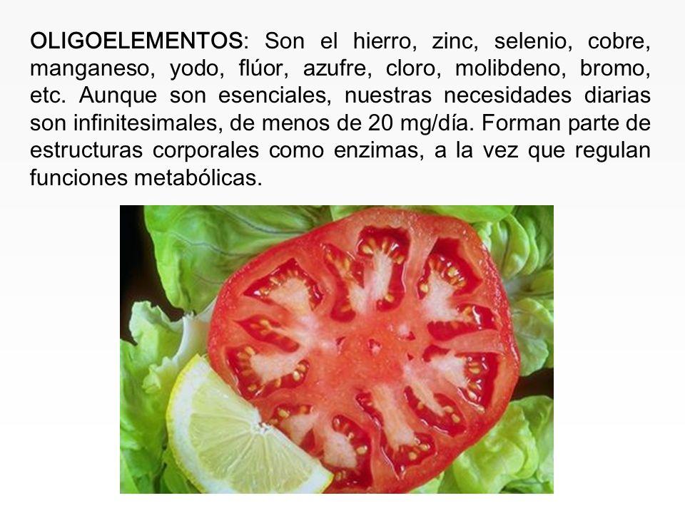 www.iasdsanjudas.com Sodio: Funciones: Control del equilibrio hídrico corporal, transmisión nerviosa, contracción muscular, etc. Fuentes: Sal, product