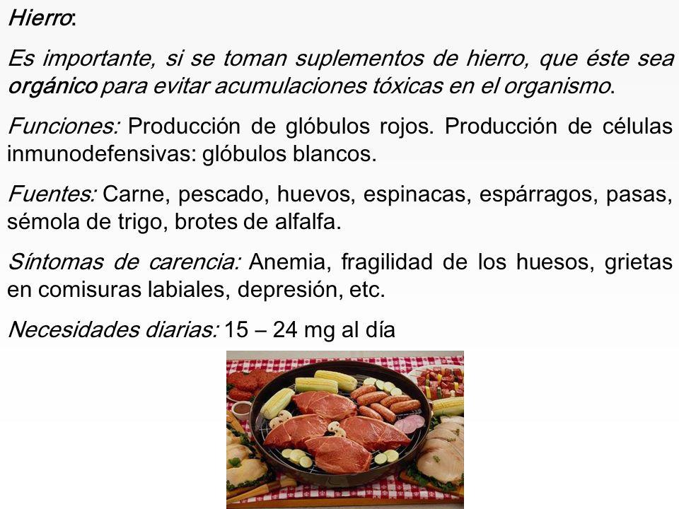 www.iasdsanjudas.com OLIGOELEMENTOS: Son el hierro, zinc, selenio, cobre, manganeso, yodo, flúor, azufre, cloro, molibdeno, bromo, etc. Aunque son ese