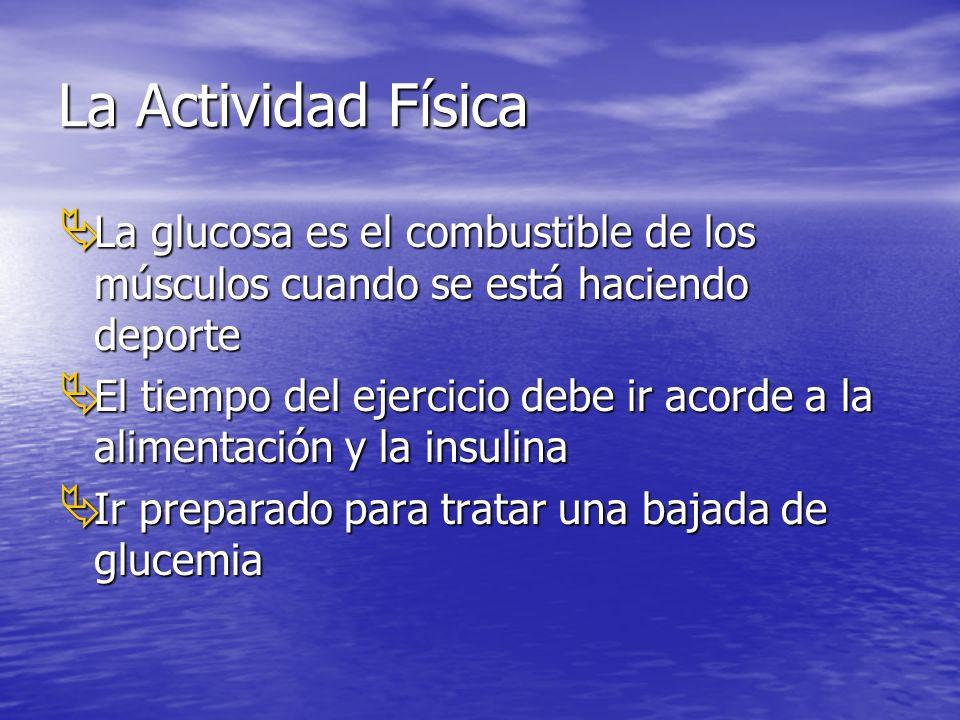 La Actividad Física La glucosa es el combustible de los músculos cuando se está haciendo deporte La glucosa es el combustible de los músculos cuando se está haciendo deporte El tiempo del ejercicio debe ir acorde a la alimentación y la insulina El tiempo del ejercicio debe ir acorde a la alimentación y la insulina Ir preparado para tratar una bajada de glucemia Ir preparado para tratar una bajada de glucemia