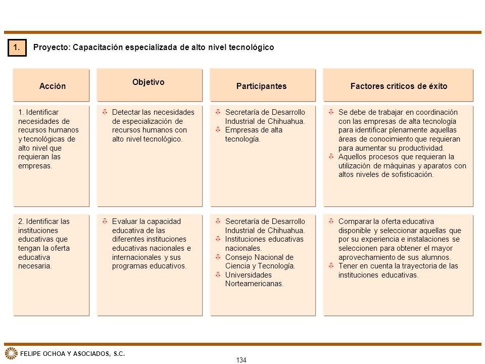 FELIPE OCHOA Y ASOCIADOS, S.C. Proyecto: Capacitación especializada de alto nivel tecnológico Acción òDetectar las necesidades de especialización de r
