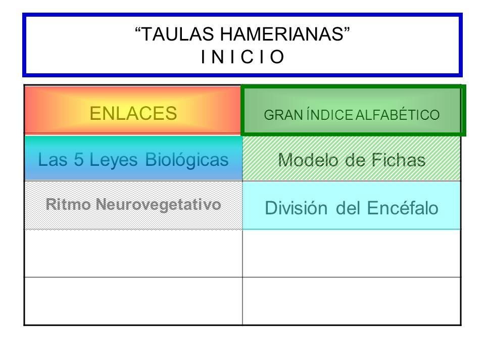 TAULAS HAMERIANAS I N I C I O ENLACES GRAN ÍNDICE ALFABÉTICO Las 5 Leyes Biológicas Modelo de Fichas Ritmo Neurovegetativo División del Encéfalo