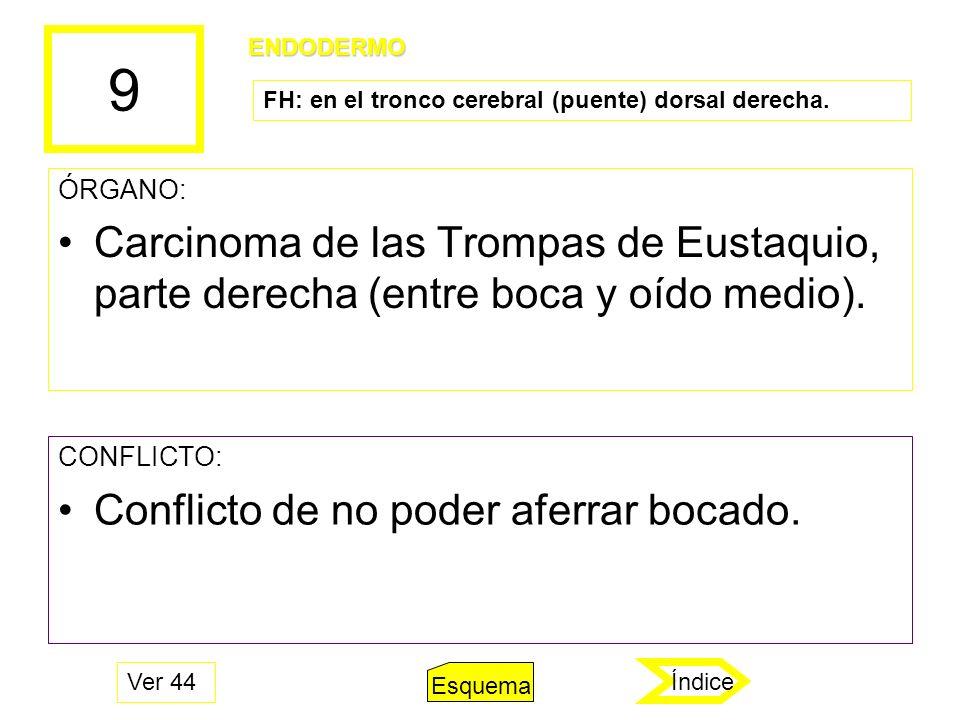 9 ÓRGANO: Carcinoma de las Trompas de Eustaquio, parte derecha (entre boca y oído medio). CONFLICTO: Conflicto de no poder aferrar bocado. ENDODERMO F