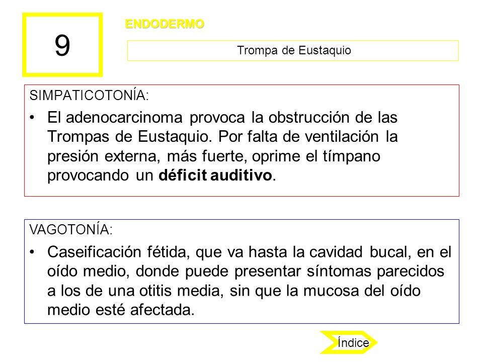 9 SIMPATICOTONÍA: El adenocarcinoma provoca la obstrucción de las Trompas de Eustaquio. Por falta de ventilación la presión externa, más fuerte, oprim