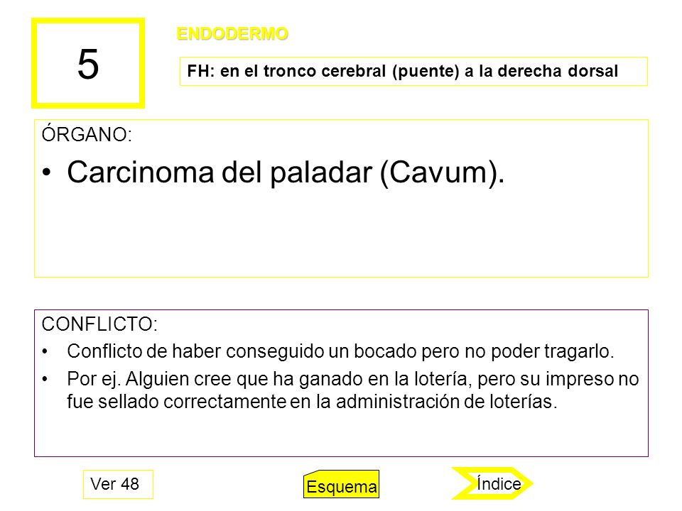 5 ÓRGANO: Carcinoma del paladar (Cavum). CONFLICTO: Conflicto de haber conseguido un bocado pero no poder tragarlo. Por ej. Alguien cree que ha ganado