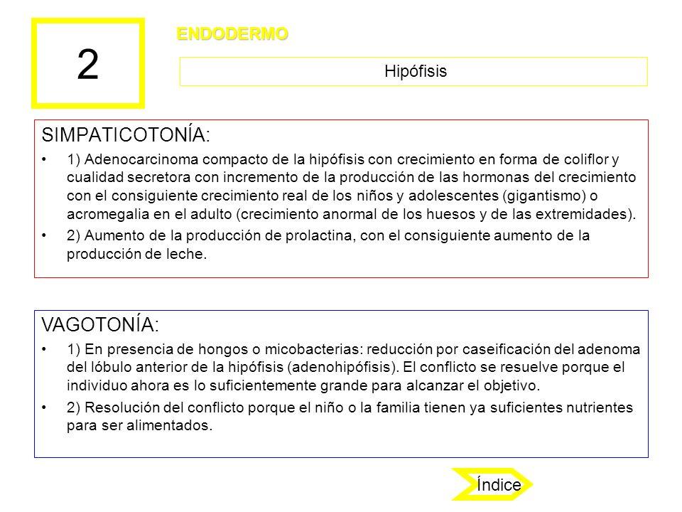 2 SIMPATICOTONÍA: 1) Adenocarcinoma compacto de la hipófisis con crecimiento en forma de coliflor y cualidad secretora con incremento de la producción