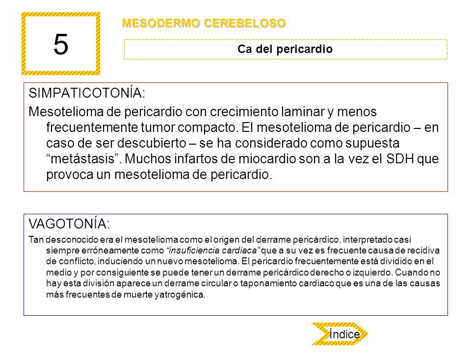5 SIMPATICOTONÍA: Mesotelioma de pericardio con crecimiento laminar y menos frecuentemente tumor compacto. El mesotelioma de pericardio – en caso de s