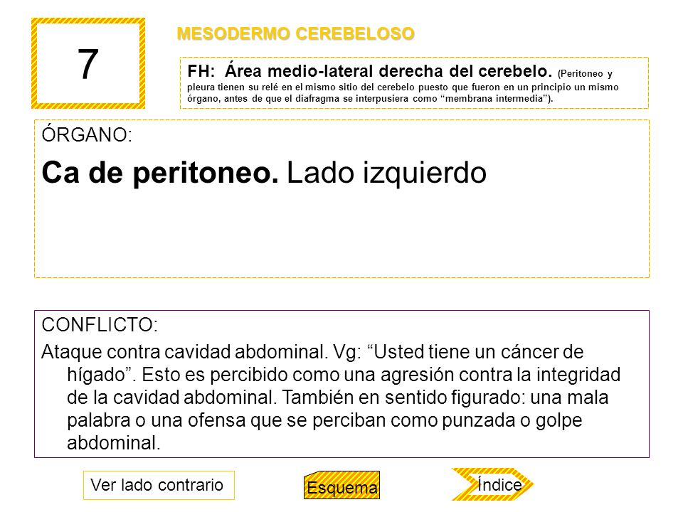 7 ÓRGANO: Ca de peritoneo. Lado izquierdo CONFLICTO: Ataque contra cavidad abdominal. Vg: Usted tiene un cáncer de hígado. Esto es percibido como una