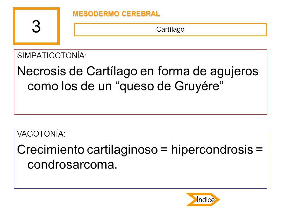 3 SIMPATICOTONÍA: Necrosis de Cartílago en forma de agujeros como los de un queso de Gruyére VAGOTONÍA: Crecimiento cartilaginoso = hipercondrosis = c