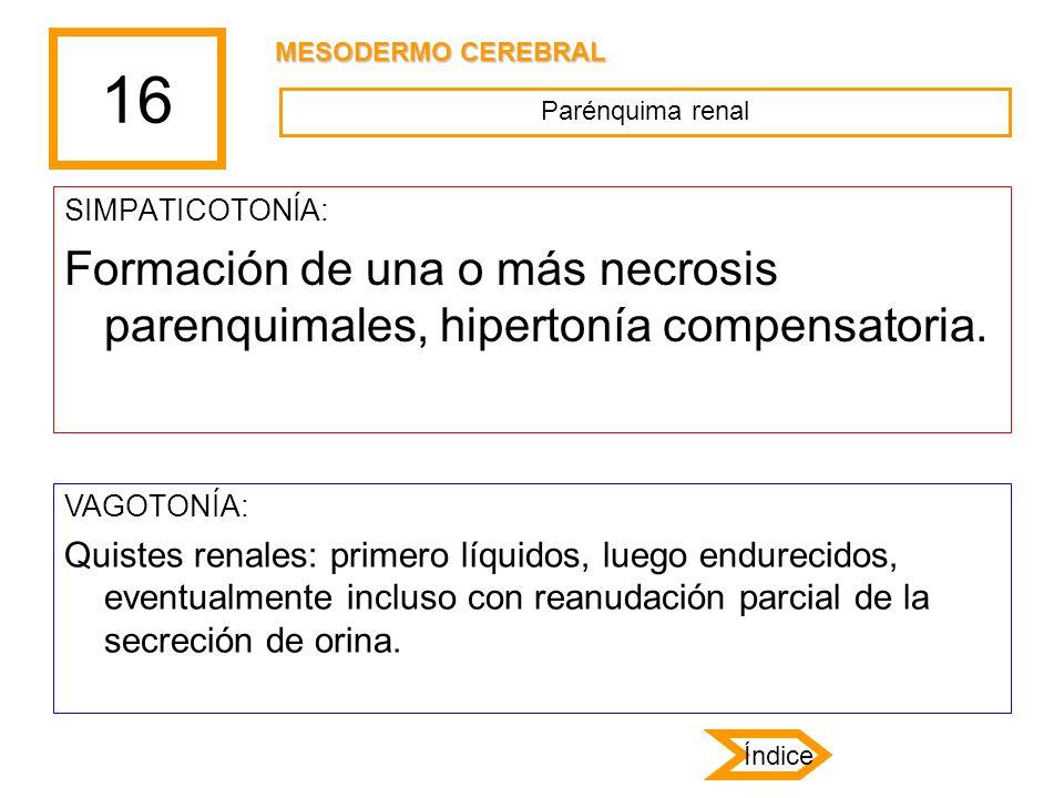 16 SIMPATICOTONÍA: Formación de una o más necrosis parenquimales, hipertonía compensatoria. VAGOTONÍA: Quistes renales: primero líquidos, luego endure