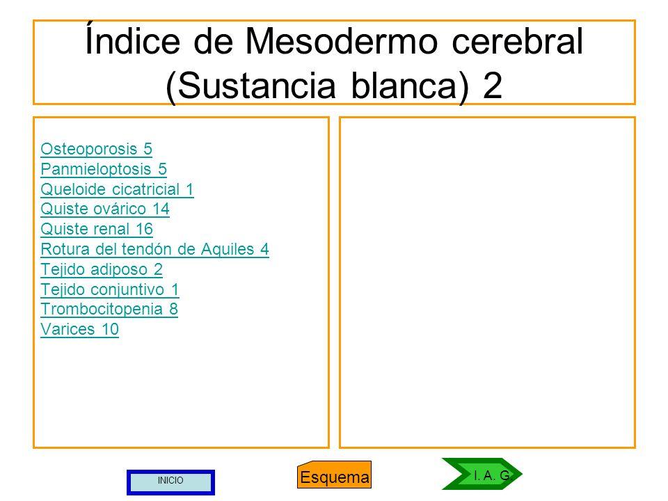 Índice de Mesodermo cerebral (Sustancia blanca) 2 Osteoporosis 5 Panmieloptosis 5 Queloide cicatricial 1 Quiste ovárico 14 Quiste renal 16 Rotura del