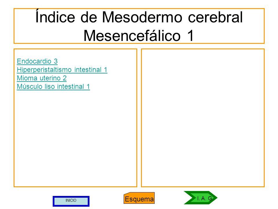 Índice de Mesodermo cerebral Mesencefálico 1 Endocardio 3 Hiperperistaltismo intestinal 1 Mioma uterino 2 Músculo liso intestinal 1 Esquema I. A. G. I