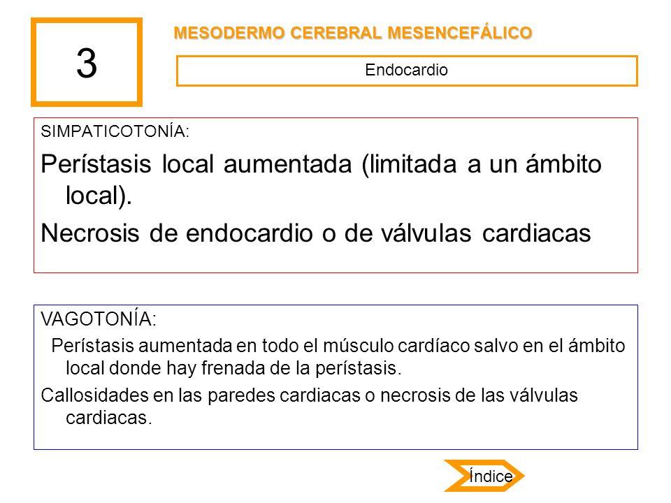 3 SIMPATICOTONÍA: Perístasis local aumentada (limitada a un ámbito local). Necrosis de endocardio o de válvulas cardiacas VAGOTONÍA: Perístasis aument