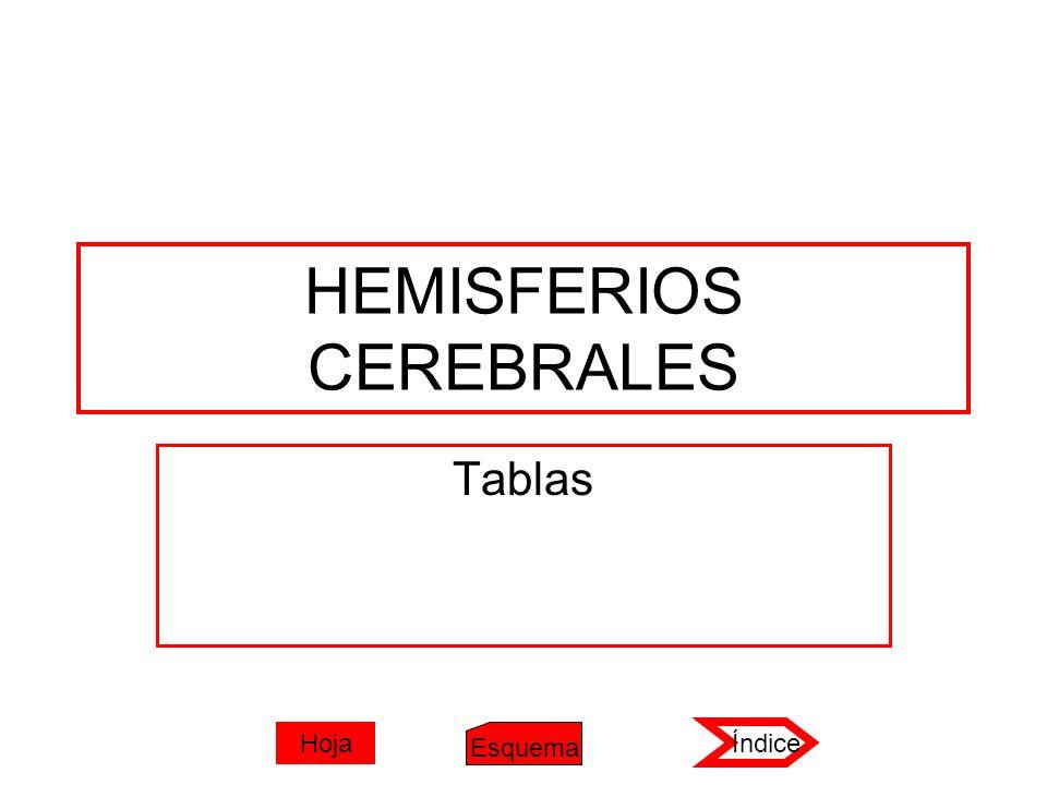 HEMISFERIOS CEREBRALES Tablas Índice Esquema Hoja