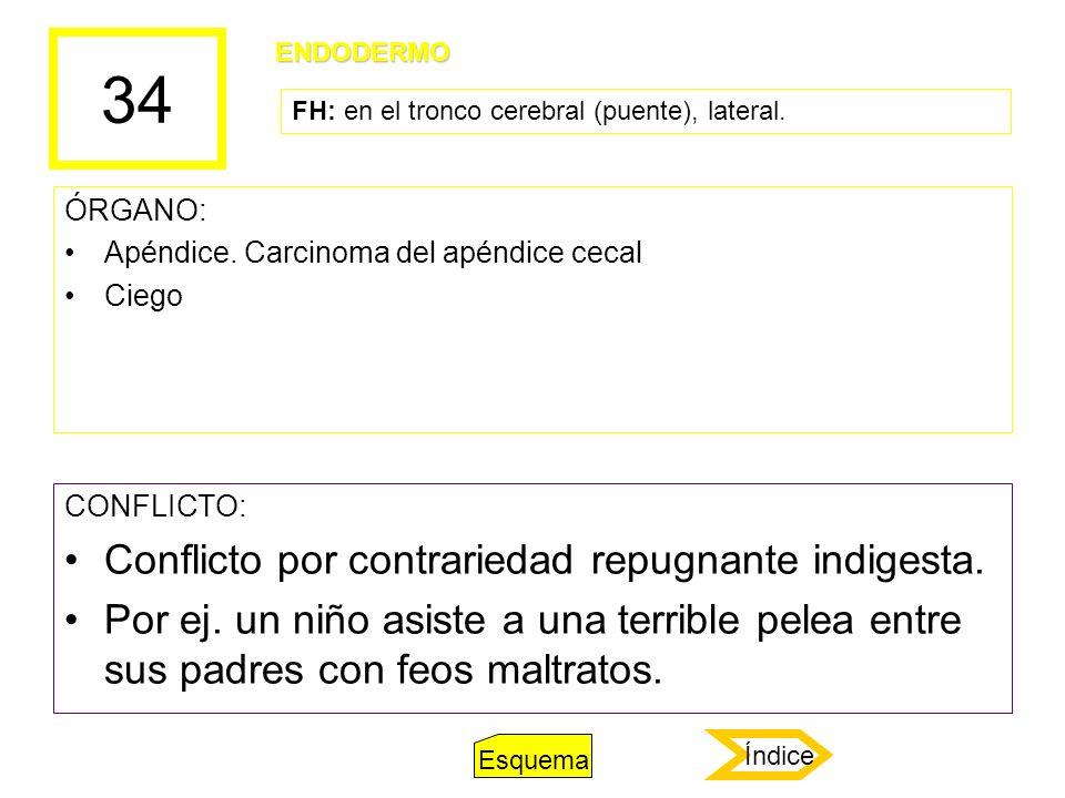 34 ÓRGANO: Apéndice. Carcinoma del apéndice cecal Ciego CONFLICTO: Conflicto por contrariedad repugnante indigesta. Por ej. un niño asiste a una terri