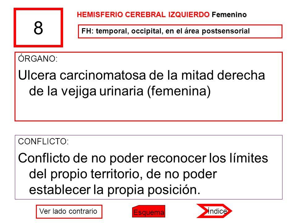 8 ÓRGANO: Ulcera carcinomatosa de la mitad derecha de la vejiga urinaria (femenina) CONFLICTO: Conflicto de no poder reconocer los límites del propio