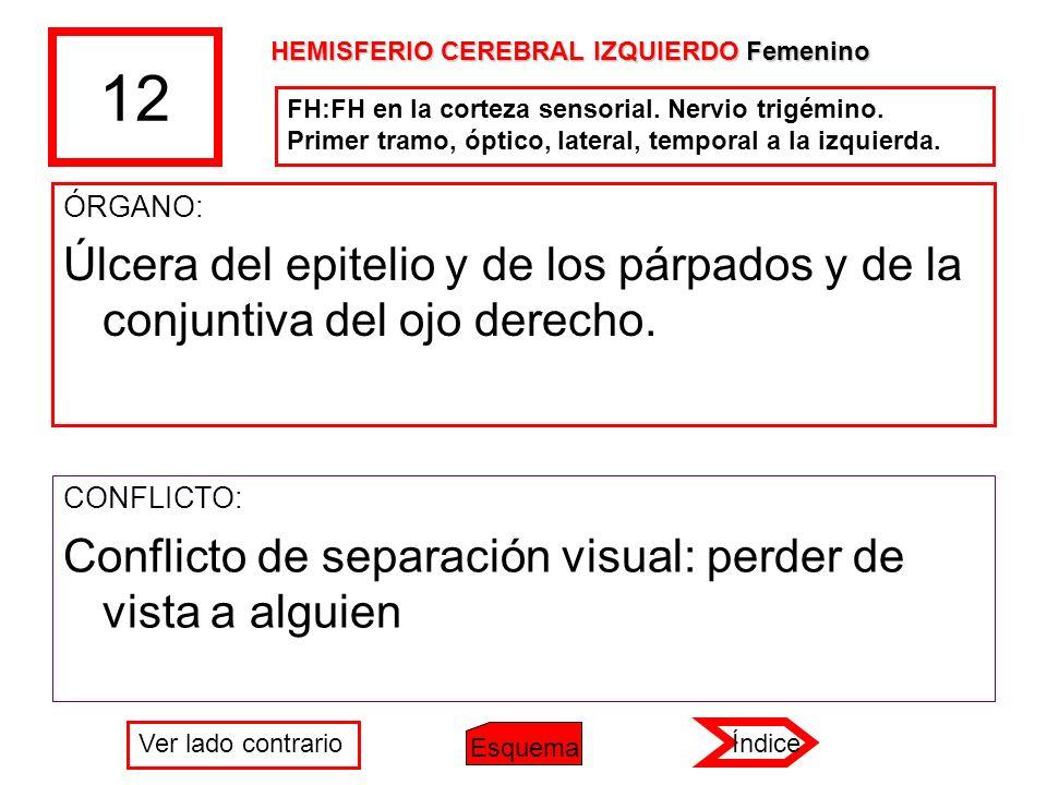 12 ÓRGANO: Úlcera del epitelio y de los párpados y de la conjuntiva del ojo derecho. CONFLICTO: Conflicto de separación visual: perder de vista a algu