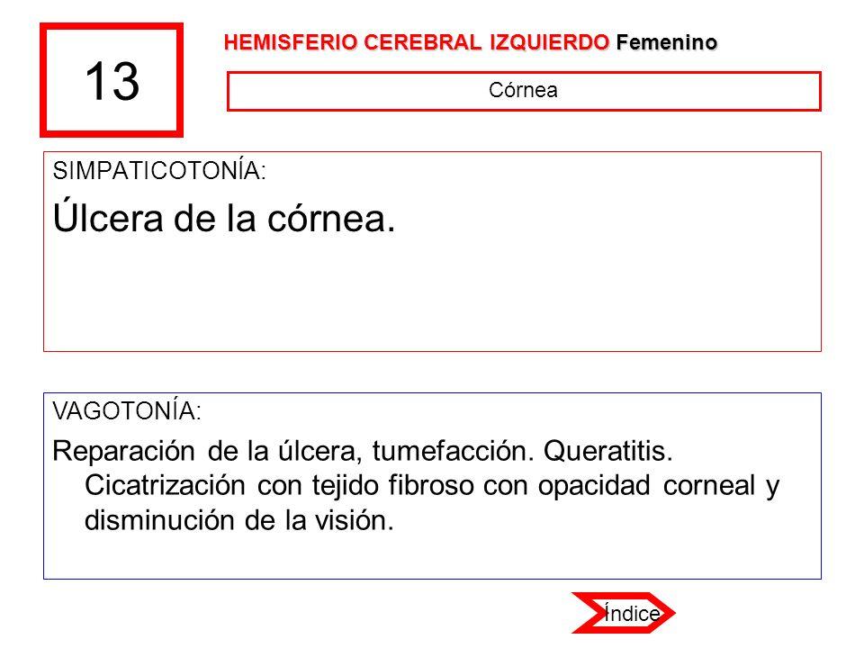 13 SIMPATICOTONÍA: Úlcera de la córnea. VAGOTONÍA: Reparación de la úlcera, tumefacción. Queratitis. Cicatrización con tejido fibroso con opacidad cor