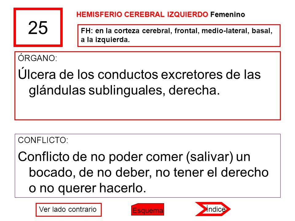 25 ÓRGANO: Úlcera de los conductos excretores de las glándulas sublinguales, derecha. CONFLICTO: Conflicto de no poder comer (salivar) un bocado, de n