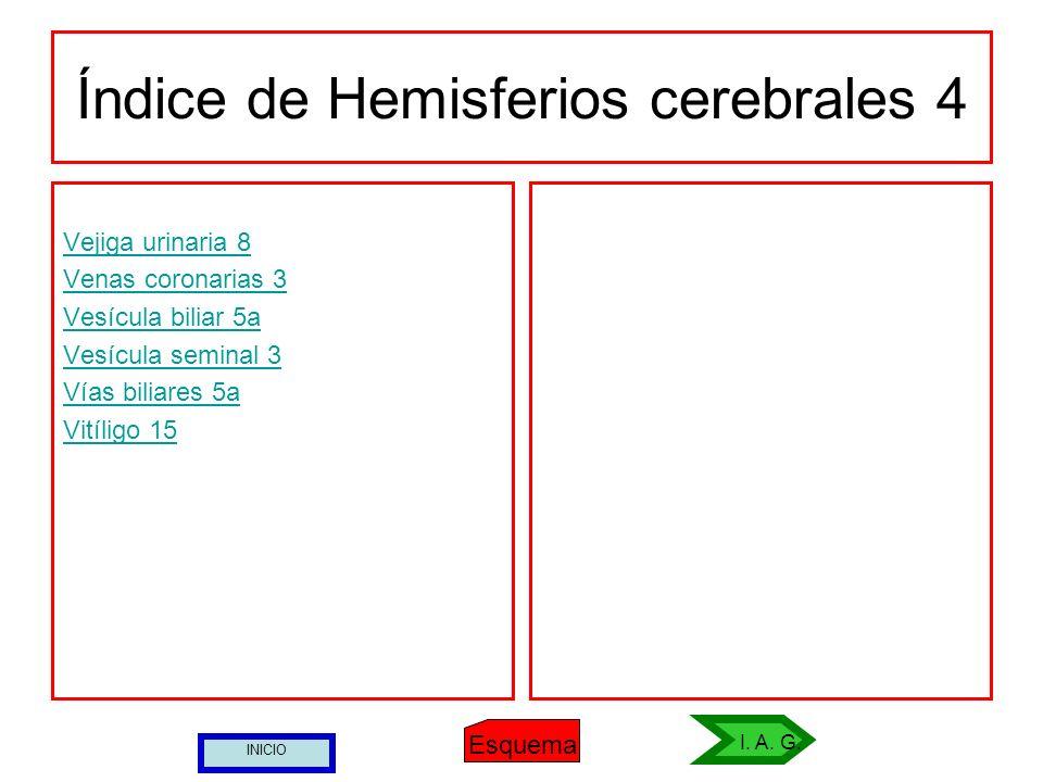 Índice de Hemisferios cerebrales 4 Vejiga urinaria 8 Venas coronarias 3 Vesícula biliar 5a Vesícula seminal 3 Vías biliares 5a Vitíligo 15 Esquema I.