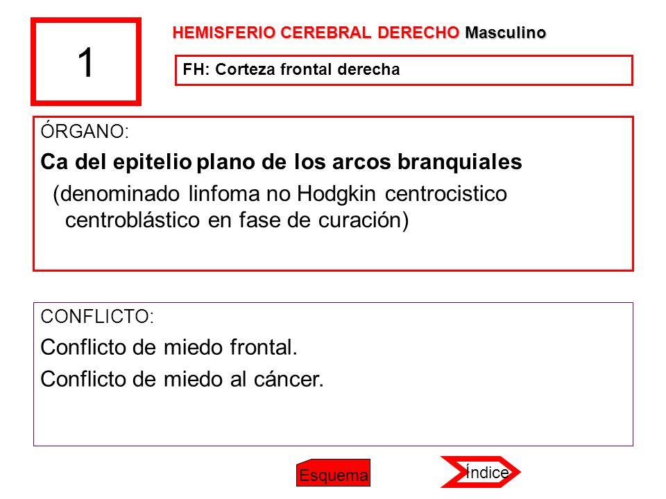 1 ÓRGANO: Ca del epitelio plano de los arcos branquiales (denominado linfoma no Hodgkin centrocistico centroblástico en fase de curación) CONFLICTO: C