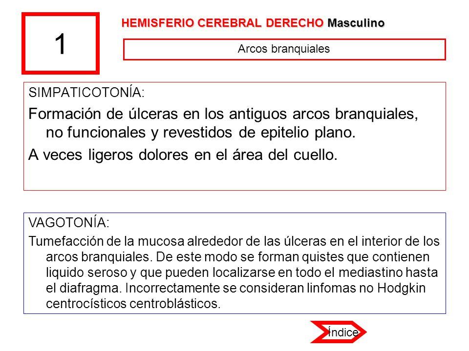 1 SIMPATICOTONÍA: Formación de úlceras en los antiguos arcos branquiales, no funcionales y revestidos de epitelio plano. A veces ligeros dolores en el