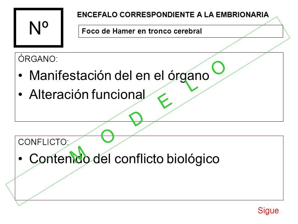 Nº ÓRGANO: Manifestación del en el órgano Alteración funcional CONFLICTO: Contenido del conflicto biológico ENCEFALO CORRESPONDIENTE A LA EMBRIONARIA