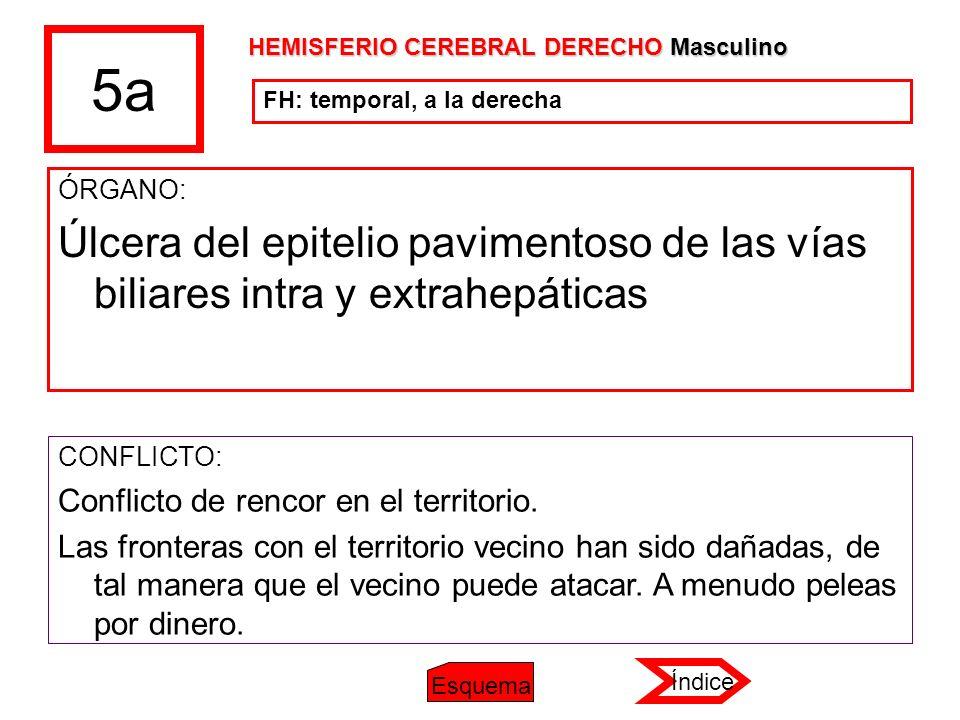 5a ÓRGANO: Úlcera del epitelio pavimentoso de las vías biliares intra y extrahepáticas CONFLICTO: Conflicto de rencor en el territorio. Las fronteras