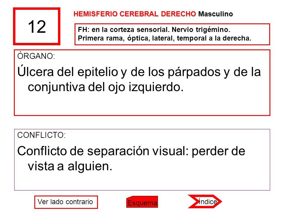 12 ÓRGANO: Úlcera del epitelio y de los párpados y de la conjuntiva del ojo izquierdo. CONFLICTO: Conflicto de separación visual: perder de vista a al
