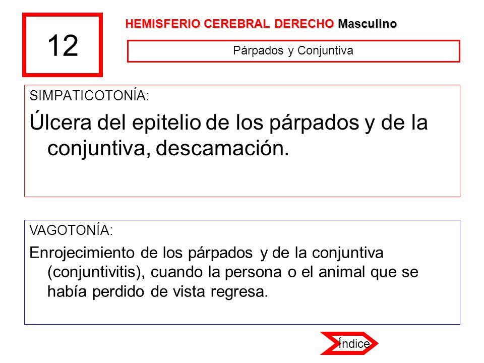 12 SIMPATICOTONÍA: Úlcera del epitelio de los párpados y de la conjuntiva, descamación. VAGOTONÍA: Enrojecimiento de los párpados y de la conjuntiva (