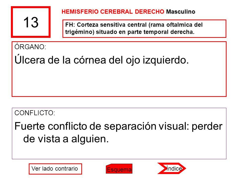 13 ÓRGANO: Úlcera de la córnea del ojo izquierdo. CONFLICTO: Fuerte conflicto de separación visual: perder de vista a alguien. HEMISFERIO CEREBRAL DER